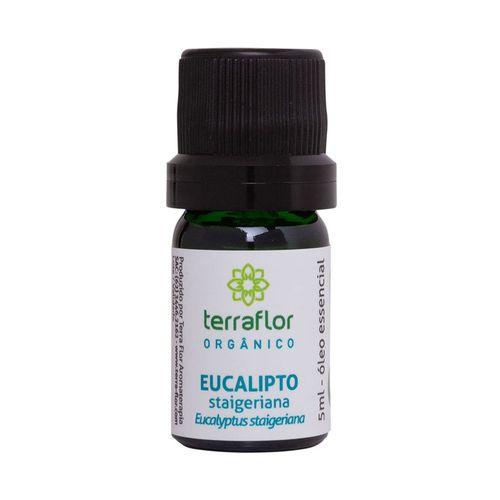 oleo-essencial-de-eucalipto-staigeriana-organico-5ml-terra-flor